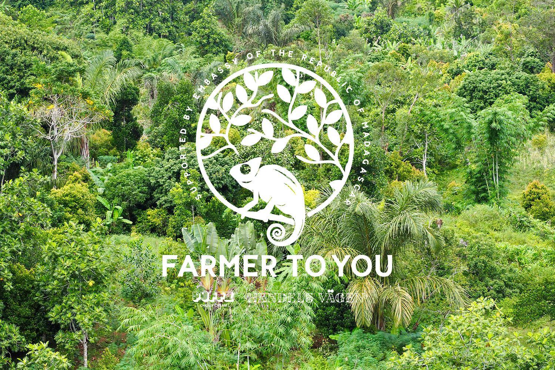 マダガスカルの大自然の中で育った希少な「アグロフォレストリバニラ」を使用した究極のシューアイスがPUFFZで販売決定!
